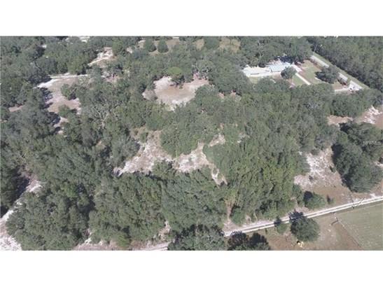 Residential Development - LADY LAKE, FL (photo 2)