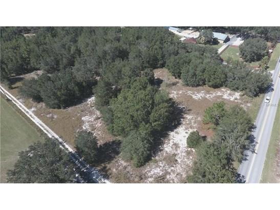 Residential Development - LADY LAKE, FL (photo 3)