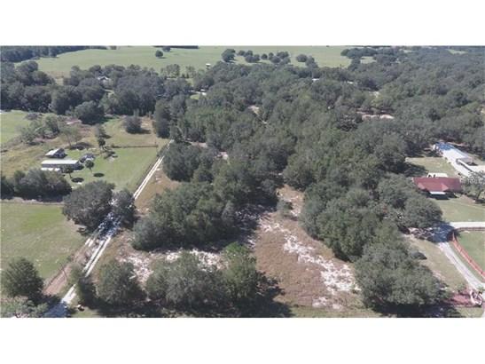 Residential Development - LADY LAKE, FL (photo 4)