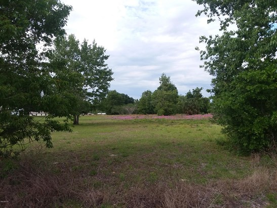 Vacant Land - Weirsdale, FL (photo 5)