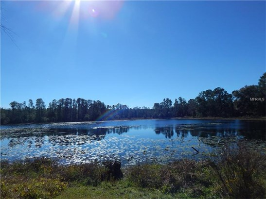 Single Family Home, Ranch - PAISLEY, FL (photo 5)