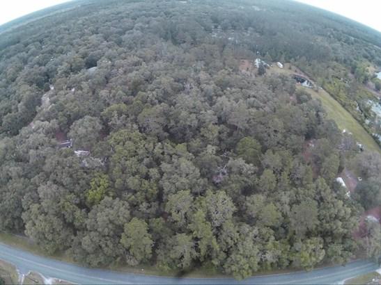 Vacant Land - Citra, FL (photo 1)