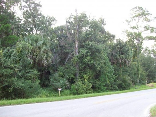 Vacant Land - Micanopy, FL (photo 1)
