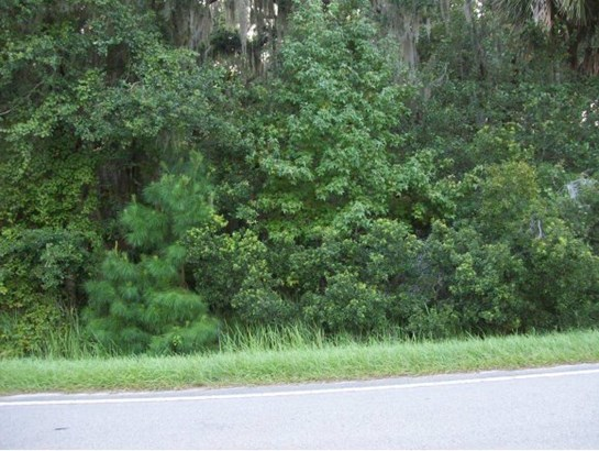 Vacant Land - Micanopy, FL (photo 2)