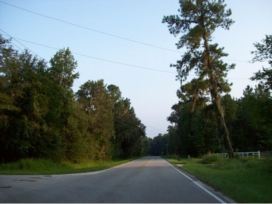 Vacant Land - Micanopy, FL (photo 5)
