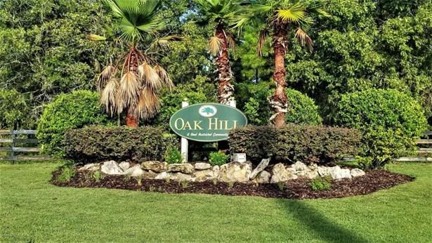 Single Family Acreage - Wildwood, FL (photo 2)