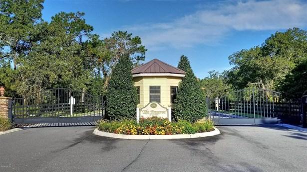 Single Family Acreage - Wildwood, FL (photo 3)