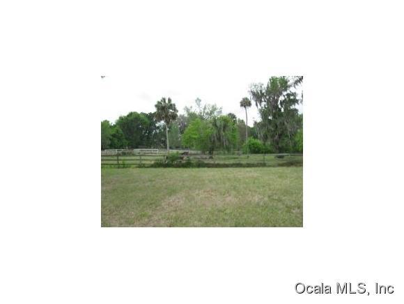 Farm - McIntosh, FL (photo 2)