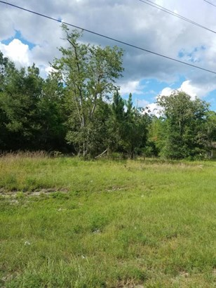 Vacant Land - Silver Springs, FL (photo 1)