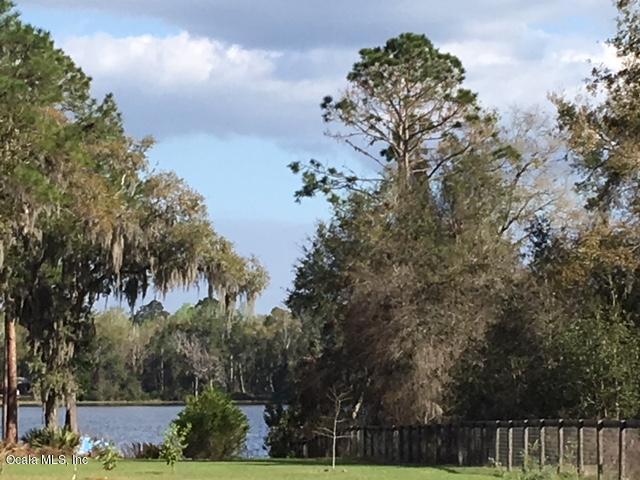 Vacant Land - Ocklawaha, FL