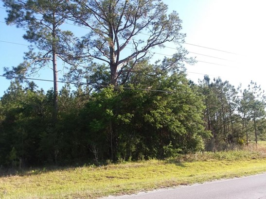 Vacant Land - Fort McCoy, FL