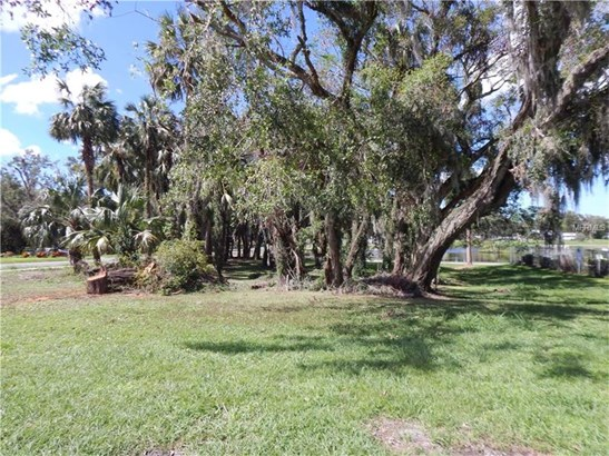 Single Family Use - UMATILLA, FL (photo 5)