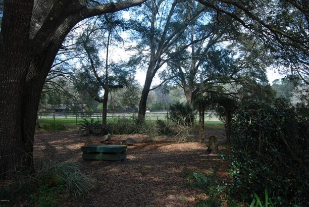 Single Family Acreage - Ocala, FL (photo 4)
