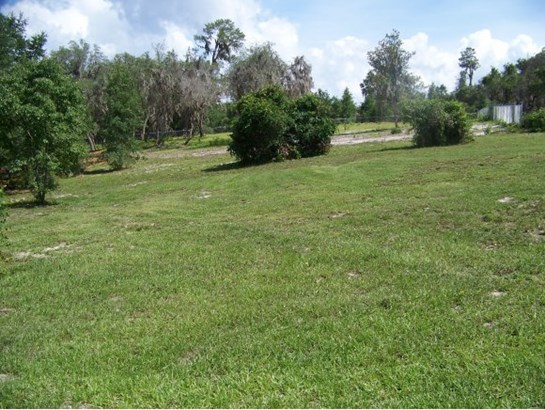 Vacant Land - Salt Springs, FL (photo 1)