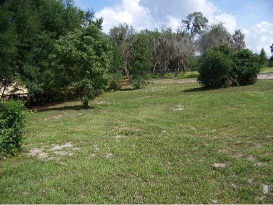 Vacant Land - Salt Springs, FL (photo 2)