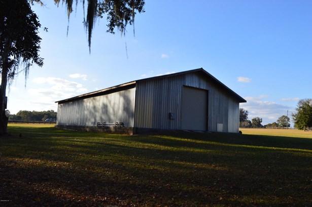 Farm - Reddick, FL (photo 5)