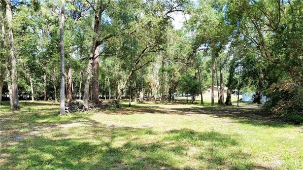 Single Family Home, Ranch - BELLEVIEW, FL (photo 3)