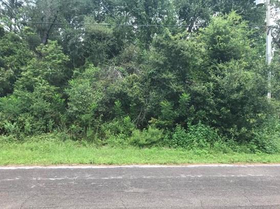 Vacant Land - Citrus Springs, FL