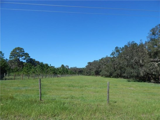 Farmland - PAISLEY, FL (photo 5)
