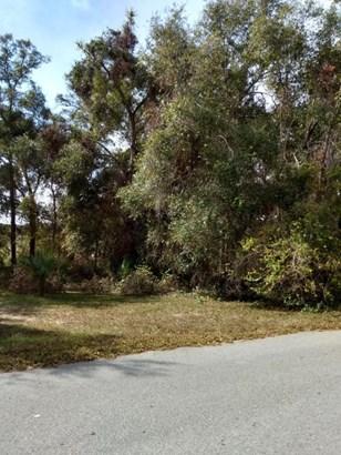 Vacant Land - Ocklawaha, FL (photo 1)