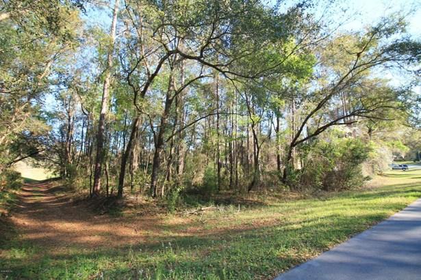 Vacant Land - Dunnellon, FL (photo 3)