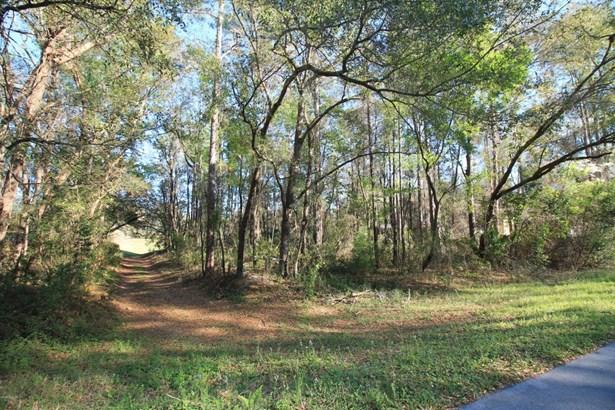 Vacant Land - Dunnellon, FL (photo 4)