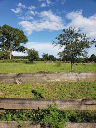 Vacant Land - Morriston, FL