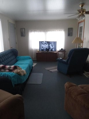 Manufactured Home w/Real Prop - Fort McCoy, FL (photo 3)