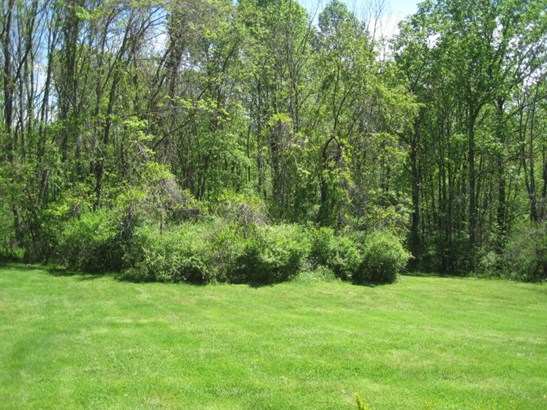 View of Woods from Deck; Private Backyard (photo 4)