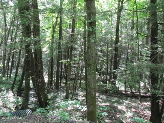 100 +/- wooded acres