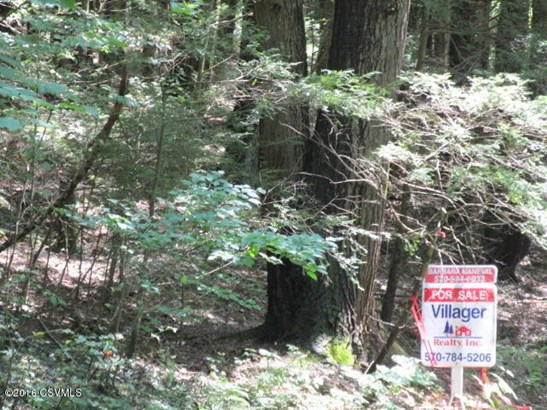 100 +/- wooded acres (photo 4)