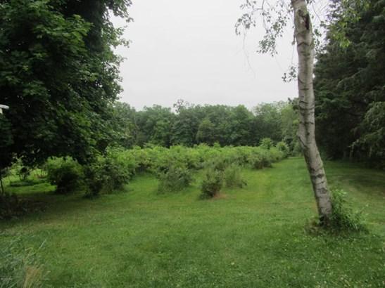 788 Southern Dr, Catawissa, PA - USA (photo 5)