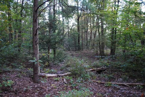 0000 Moyers ******** , Middleburg, PA - USA (photo 5)