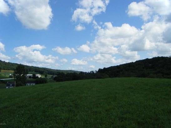 Buckwheat Valley Rd ******** , Mount Pleasant Mills, PA - USA (photo 1)