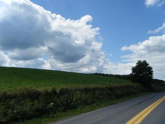 Buckwheat Valley Rd ******** , Mount Pleasant Mills, PA - USA (photo 2)