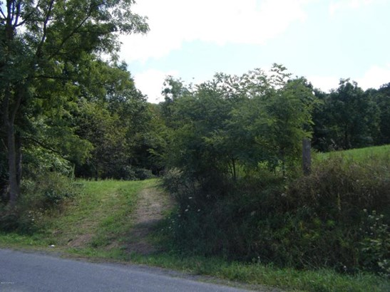 Buckwheat Valley Rd ******** , Mount Pleasant Mills, PA - USA (photo 3)