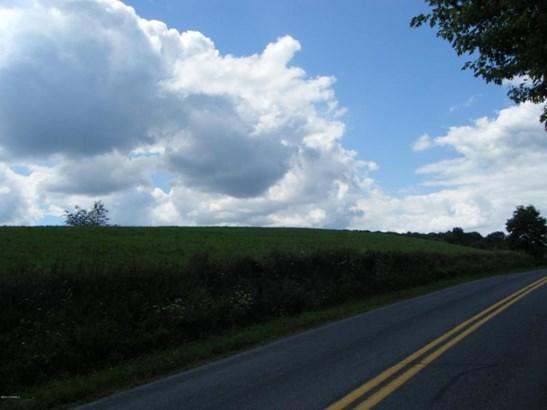 Buckwheat Valley Rd ******** , Mount Pleasant Mills, PA - USA (photo 4)