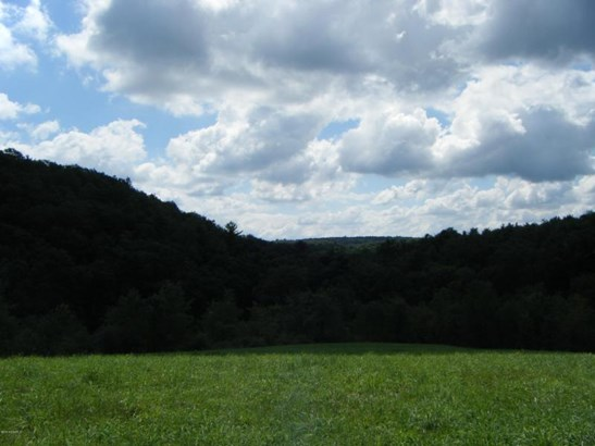Buckwheat Valley Rd ******** , Mount Pleasant Mills, PA - USA (photo 5)