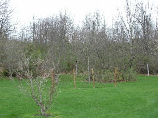 FRUIT TREES AND BERRY BUSHES (photo 5)
