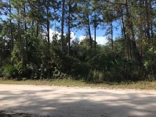 Timber, All Property - Vero Beach, FL