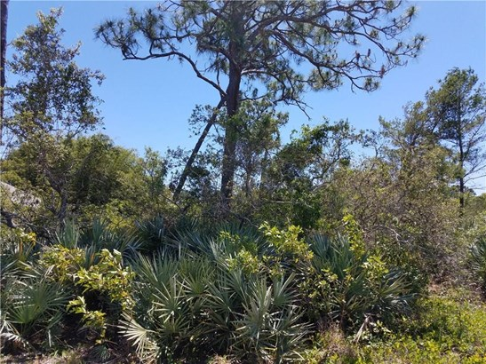 All Property, Single Family - Micco, FL (photo 4)
