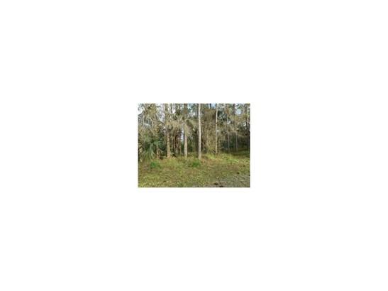All Property, Single Family - Fellsmere, FL (photo 3)