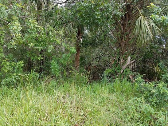 Commercial, All Property - Fellsmere, FL (photo 4)