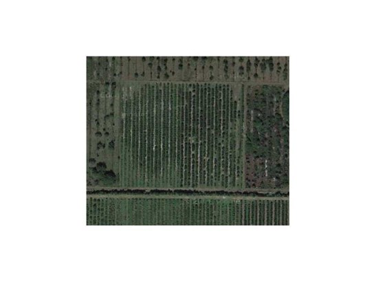 Agricultural, All Property - Fellsmere, FL (photo 1)