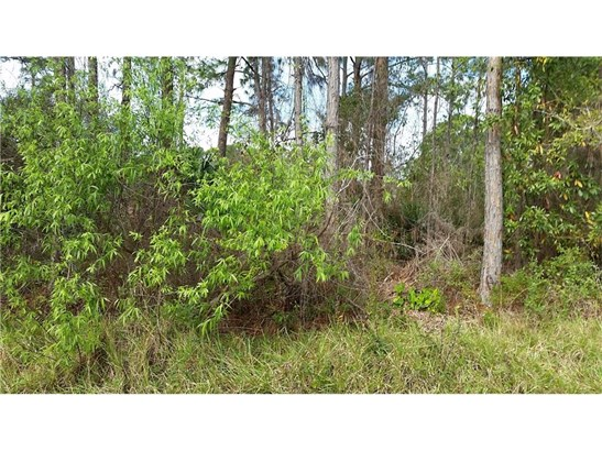 Timber, All Property - Palm Bay, FL (photo 2)