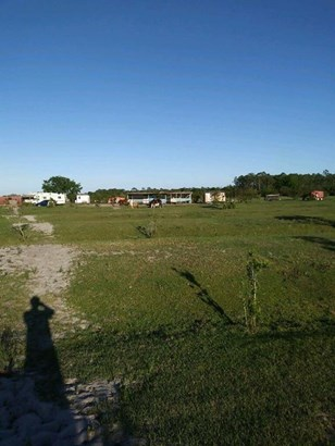 Agricultural, All Property - Fellsmere, FL (photo 4)