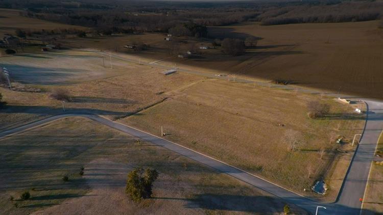 1051 Blair Pond Rd, Winchester, TN - USA (photo 4)