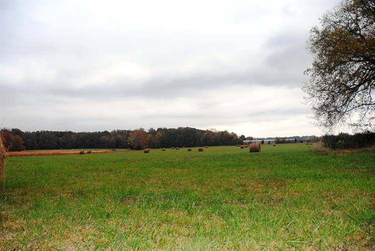 0 Ledford Mill Rd, Tullahoma, TN - USA (photo 1)