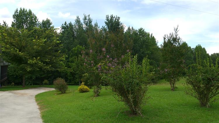448 Marble Plains Road, Winchester, TN - USA (photo 3)