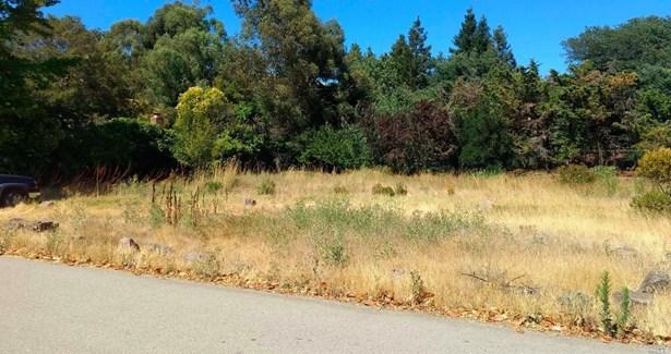 Residential - San Rafael, CA (photo 3)